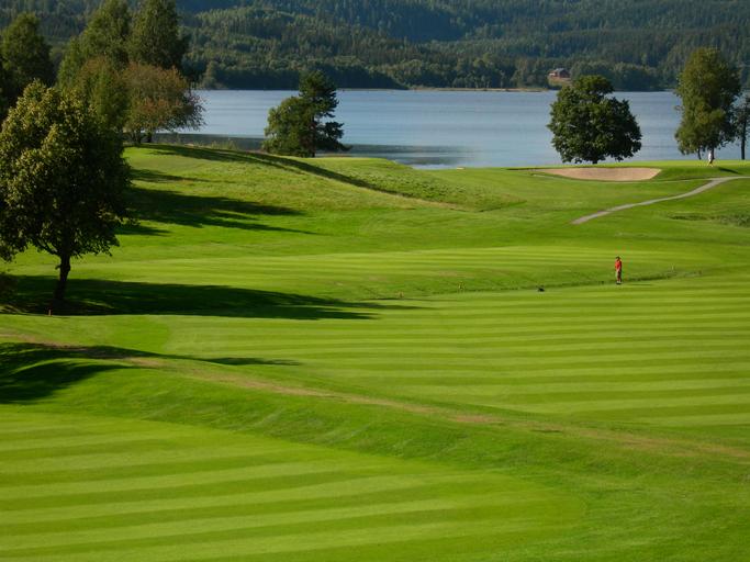 En  bedre  helse  med  golf
